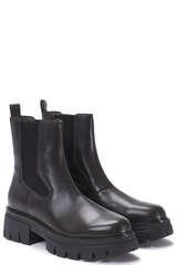 Ankle-Boots Lenny aus Leder in Dunkelbraun - ASH